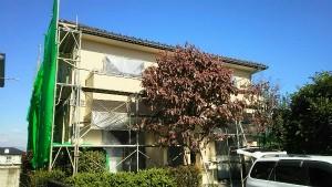 群馬 塗装 外壁 屋根 中塗り完了