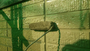 群馬 住宅塗装 塗り替えリフォーム 外壁中塗り