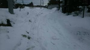 群馬 前橋 富士見 除雪作業