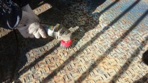 群馬 前橋 塗り替え 縞鋼板塗装 サンダーケレン