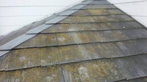 群馬 高崎 屋根劣化 苔の付着塗装前