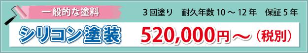 シリコン塗装の価格 520000円から