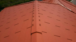高崎市貝沢町A様邸 屋根塗装完成1