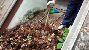 北佐久郡軽井沢町T様邸 屋根の清掃