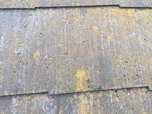 屋根化粧スレート汚れ