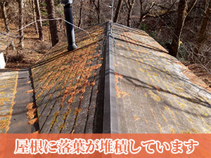 別荘屋根に落葉