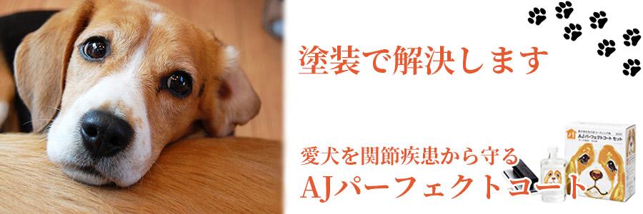 塗装で解決します 愛犬を間接疾患から守る 「AJパーフェクトコート」床コーティング剤